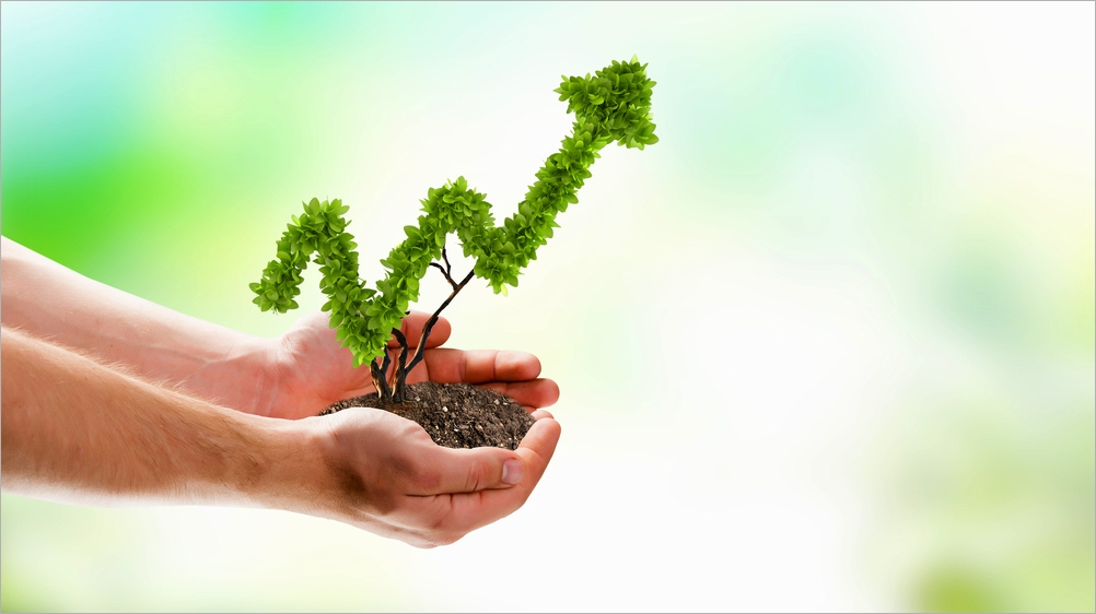 tips-for-growing-your-business